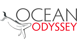 Ocean Odyssey & Springtide Charters