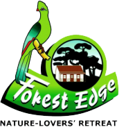 Forest Edge Nature Lovers' Retreat
