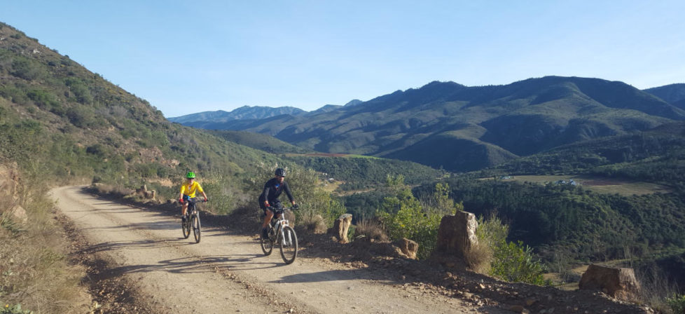 Knysna Guided Mountain biking