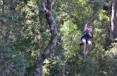 Tsitiskamma Canopy Tours